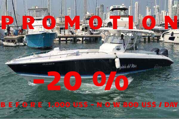rsz_bravo-41 promotion
